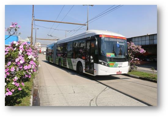 Empresa de ônibus quer zerar acidentes